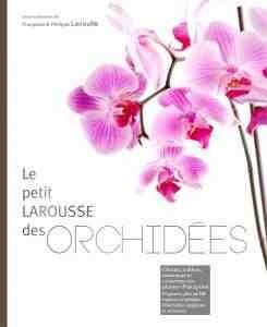 Le monde fascinant des orchidées en 80 genres