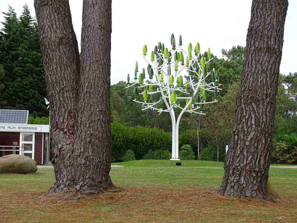 La belle glycine de l 39 cole diwan de saint brieuc beaux for Boulevard du jardin botanique 20 22