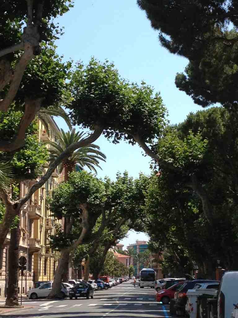 Autour du march aux fleurs de vintimille et du jardin for Boulevard du jardin botanique 20 22