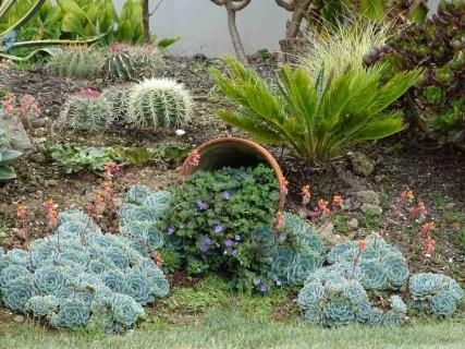 1 re webradio jardinage conseils actualit s annonces gratui - Les plus beaux jardins de particuliers ...