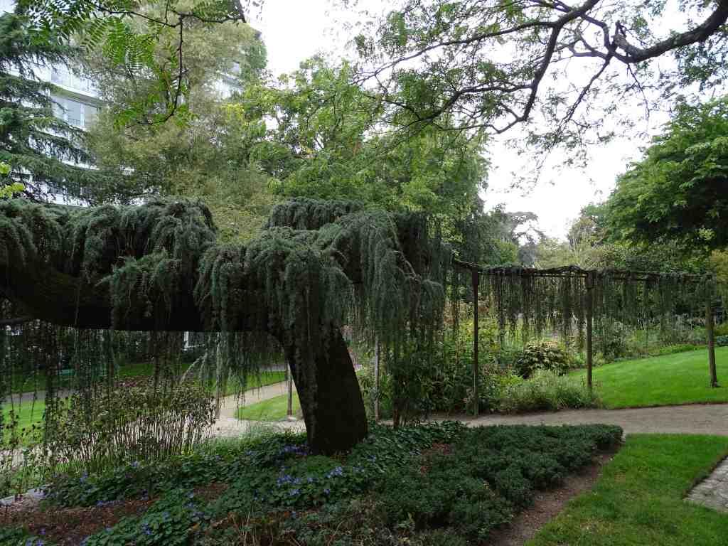 jardin des plantes beaux jardins et potagers. Black Bedroom Furniture Sets. Home Design Ideas