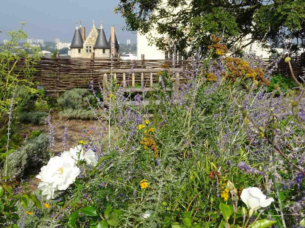 jardin suspendu du ch teau d 39 angers beaux jardins et potagers. Black Bedroom Furniture Sets. Home Design Ideas