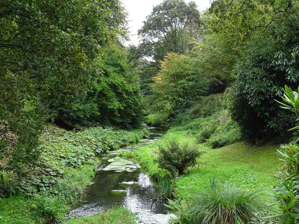 Le jardin du conservatoire botanique national de brest for Le jardin 19