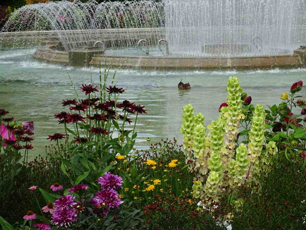 Jardin grand rond toulouse meilleures id es cr atives pour la conception de la maison for Jardin grand rond toulouse