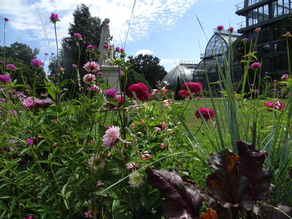 Du cot des grandes serres au parc de la t te d 39 or beaux for Jardin lyon