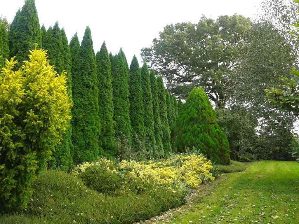 Jardin botanique des montagnes noires beaux jardins et for Boulevard du jardin botanique 20 22