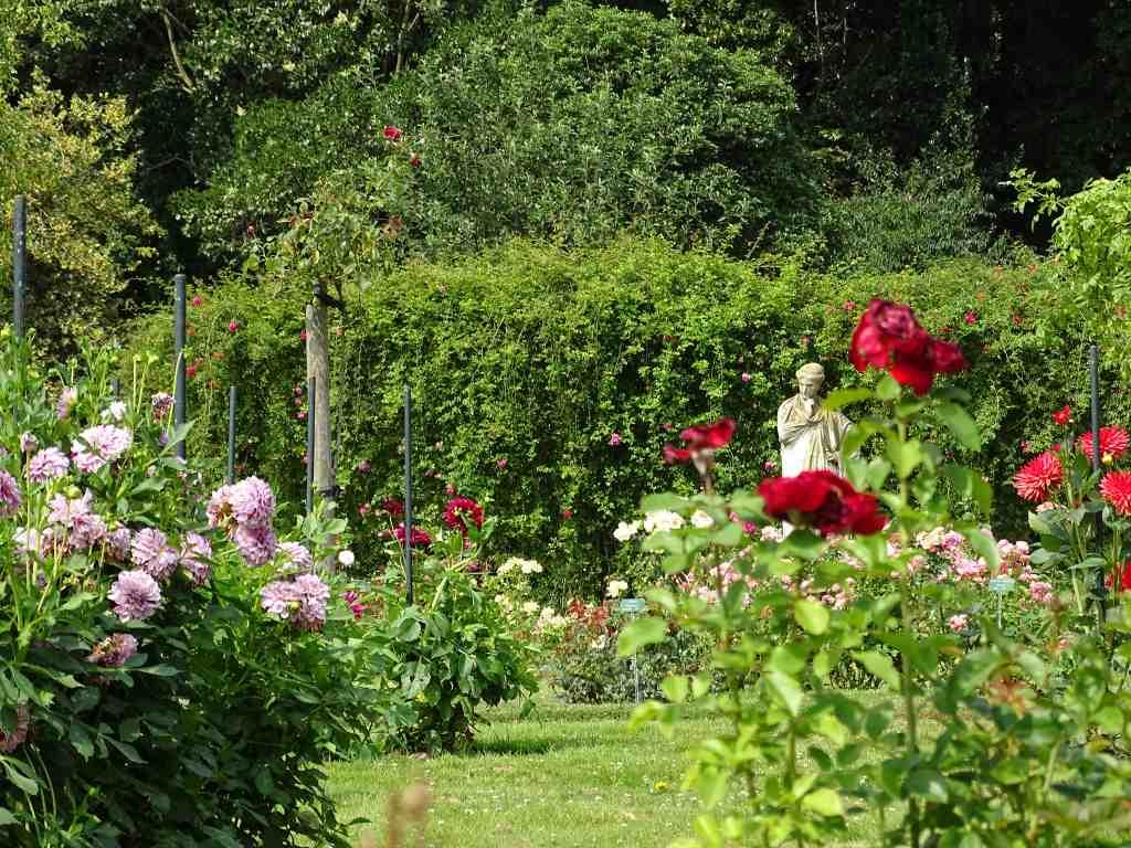 Parc du thabor le jardin botanique et la roseraie beaux for Boulevard du jardin botanique 20
