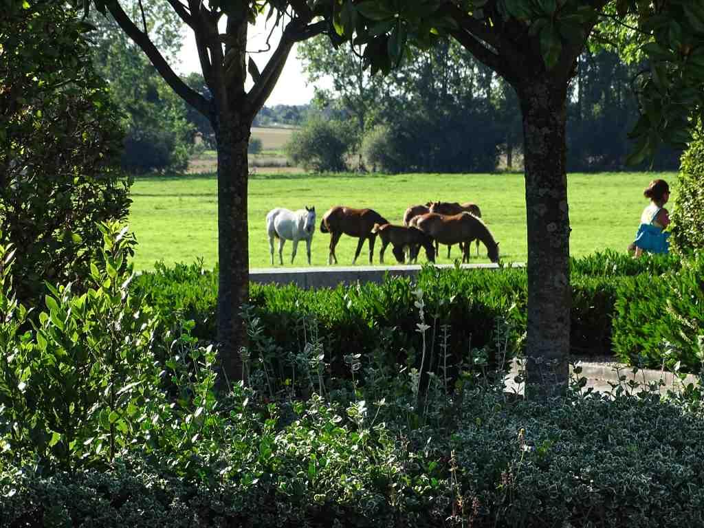 Autour du ch teau des montgommery beaux jardins et potagers for Boulevard du jardin botanique 20 22