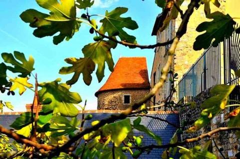 9eme édition Entre cours et Jardins Au Mans