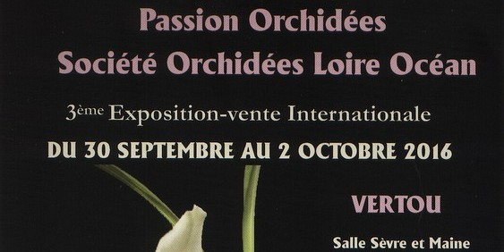 PASSION ORCHIDEES